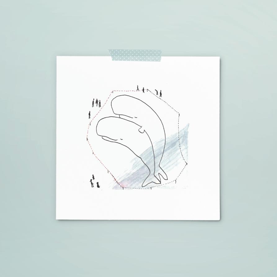 print 210 van 365+1 | tekening door Cynthia Borst