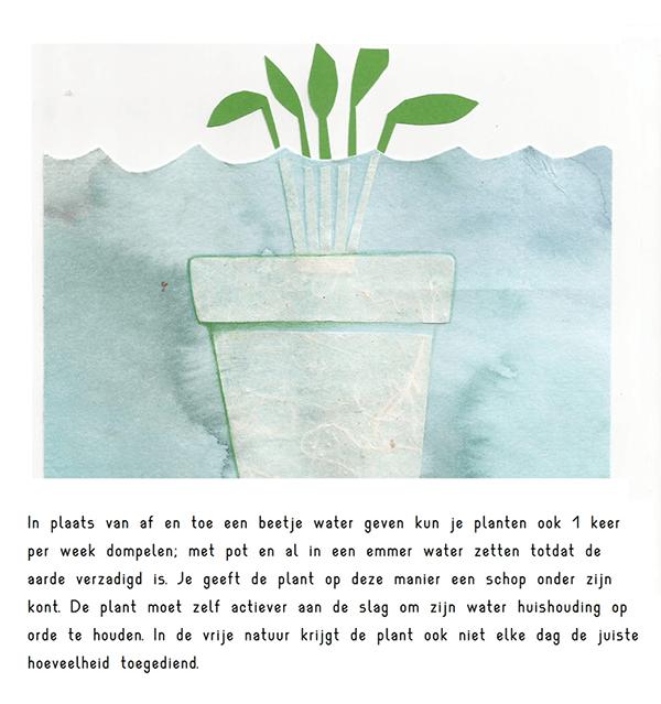 planten dompelen | tekening door Cynthia Borst